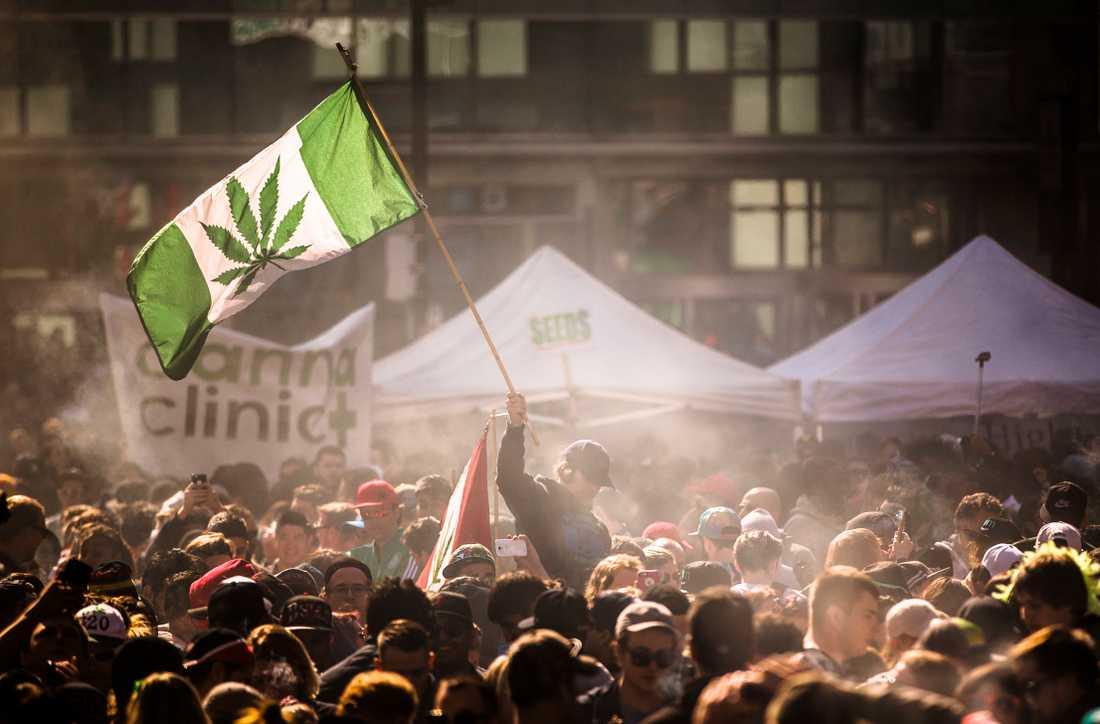 Den nya cannabislagen klubbades igenom i parlamentet i somras, efter några års debatt. Arkivbild från en demonstration i Toronto april 2016.