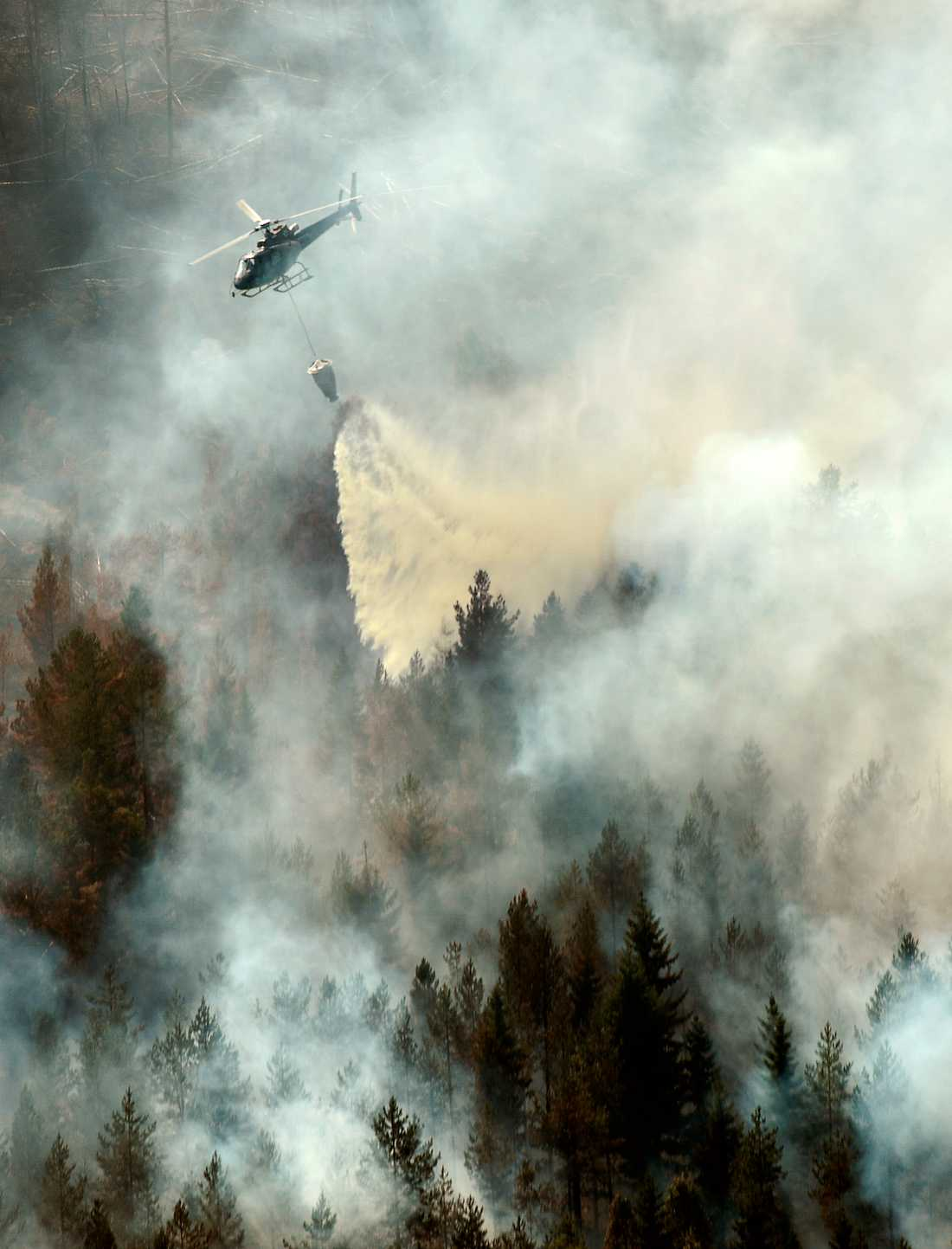 Släckningsarbete med helikopter över branden i Ljusdal.