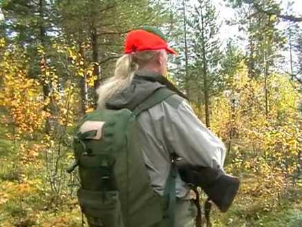 Kristin Widmark Engebro Den här gången kommer vi väldigt nära, det är endast en liten björkdunge mellan oss och älgen.