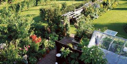 Omkring tvåtusen arter växer i Sven och Irénes trädgård. De har skapat förutsättningar för växter som egentligen inte klarar sig på de här breddgraderna.