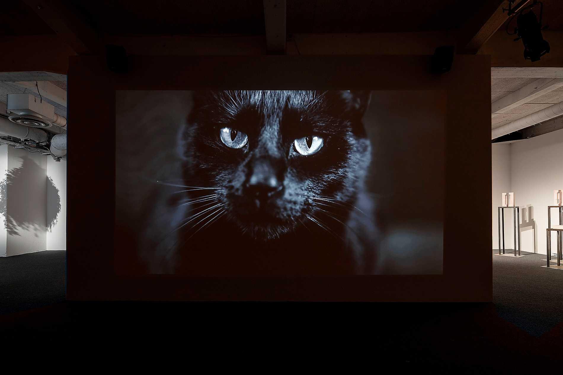 "Tanya Busse: ""The Poet's Antidote"" (2019), ett av verken på utställningen ""Sacrifice""."