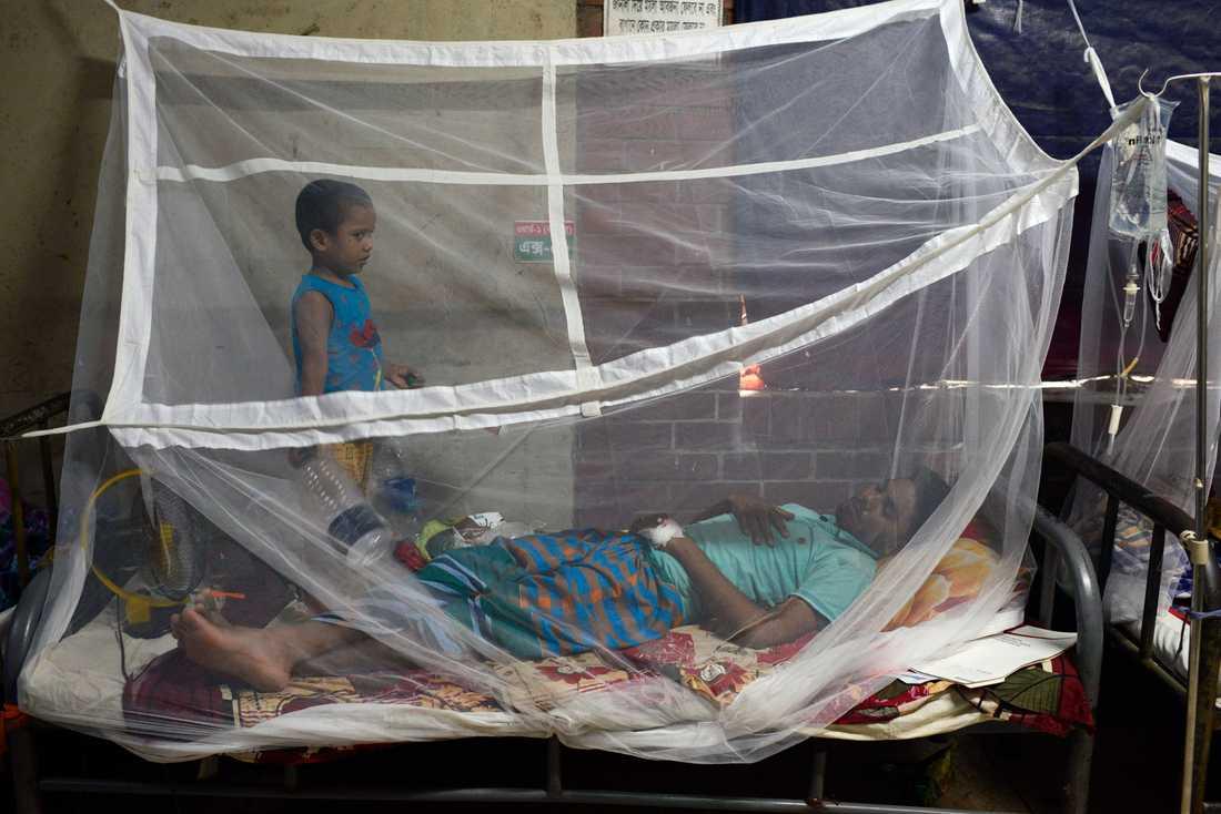 Ett barn står vid sin pappa som behandlas för denguefeber i Dhaka. Arkivbild.