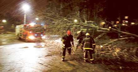 """""""Per"""" dödade fyra Söndagen den 14 januari i fjol drabbades Sverige av det värsta stormovädret sedan Gudrun. Fyra personer omkommer på grund av fallande träd och 280 000 hushåll blir utan ström. På bilden röjer brandkåren upp efter stormens härjningar i Bromma i norra Stockholm."""