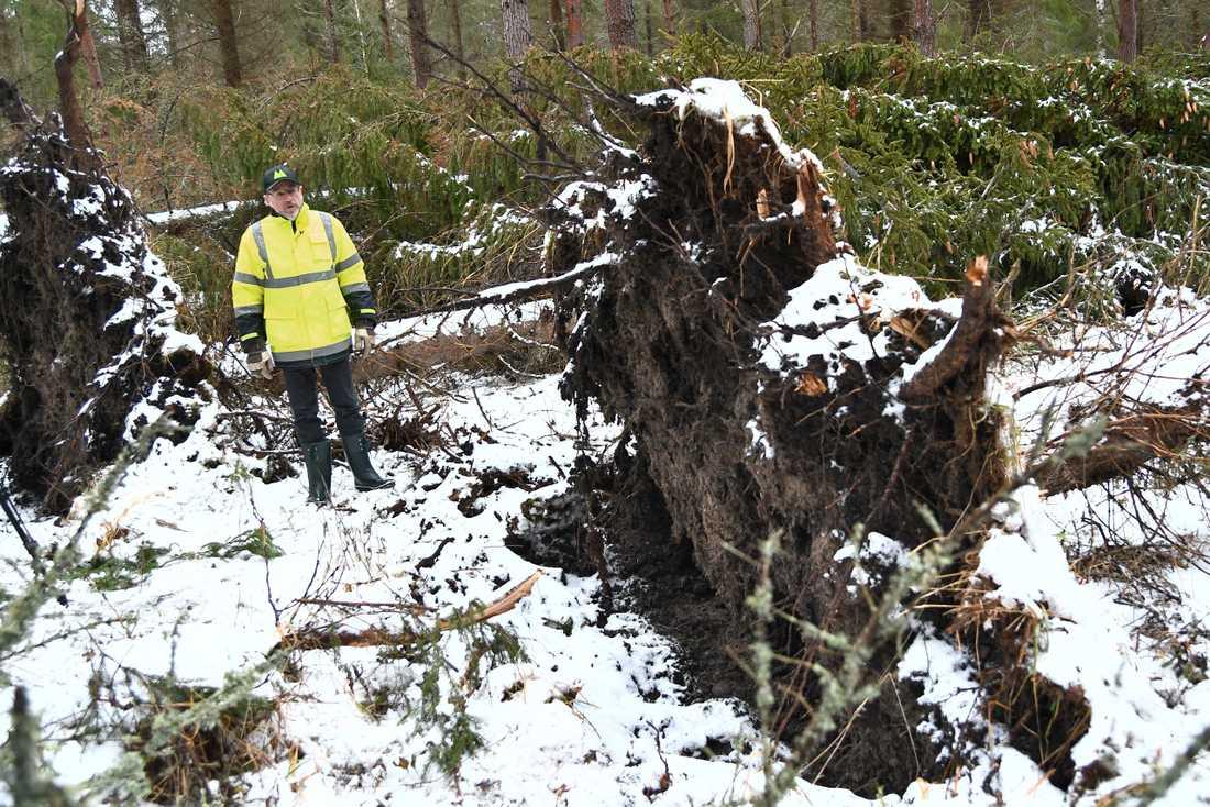 Stormen slog särskilt hårt mot Norrtälje kommun.