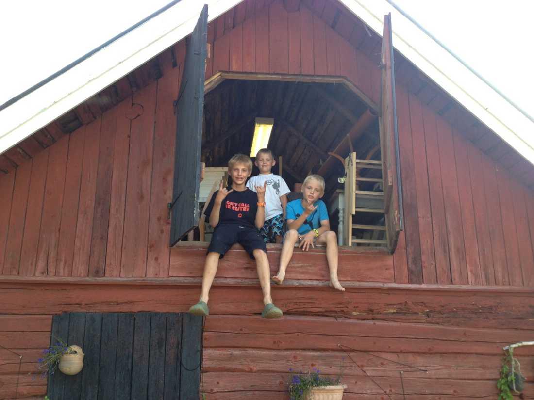 Mina söner vid ett besök på landet.