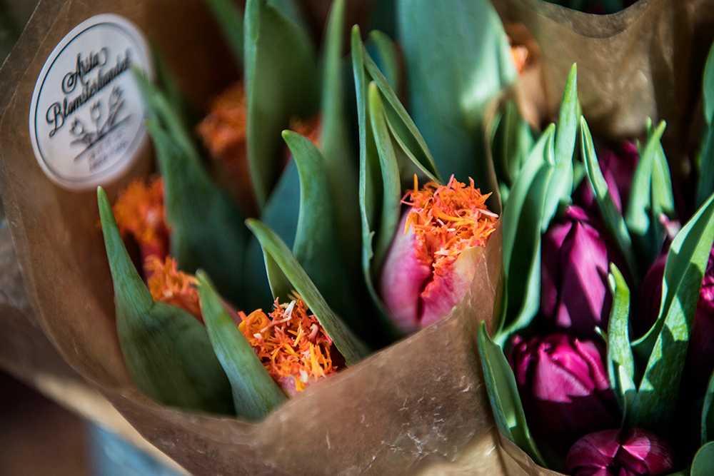 De här fransiga tulpanerna är eftertraktade i år.