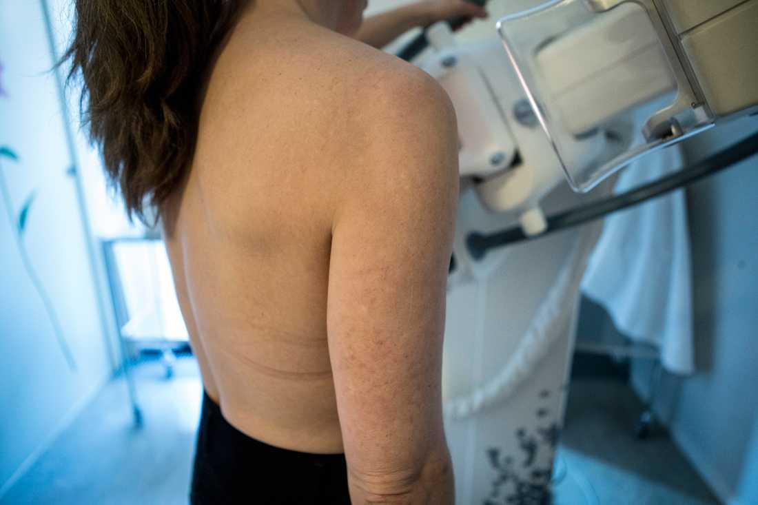 Alla kvinnor, oavsett var de kommer från, behöver kontinuerligt undersöka sina bröst. Tidig upptäckt av tumörer räddar liv, säger Marit Jenset, generalsekreterare på Bröstcancerförbundet.