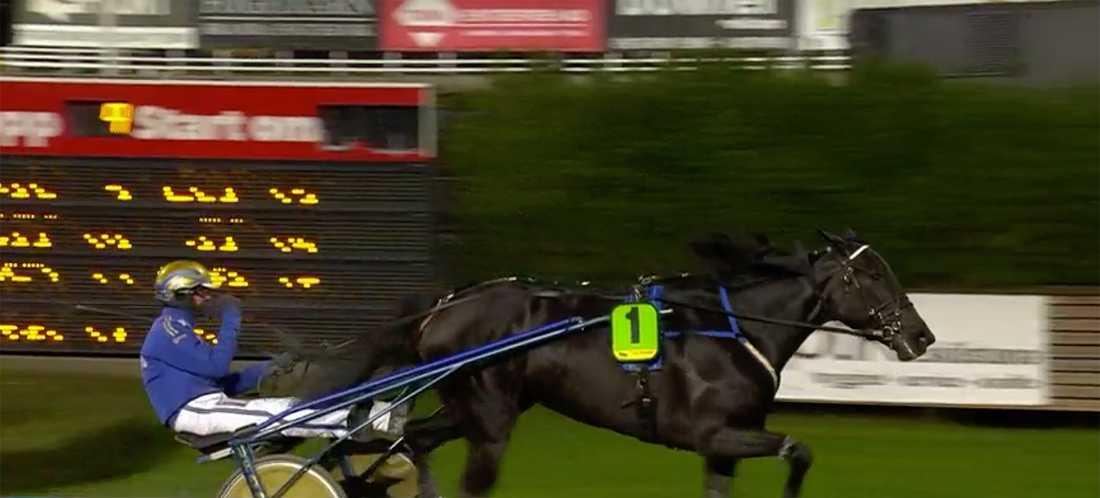 Björn Goops segergest efter vinsten.