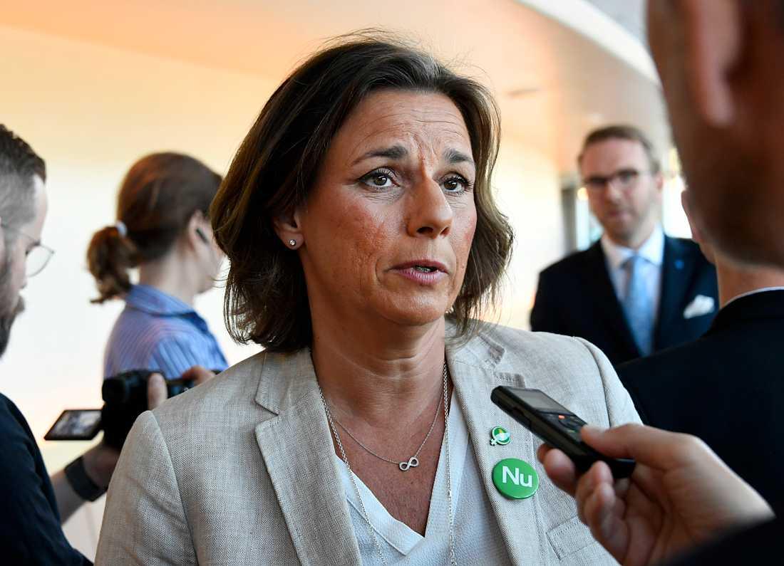 Isabella Lövin får tungt uppdrag på klimatmötet i polska Katowice.