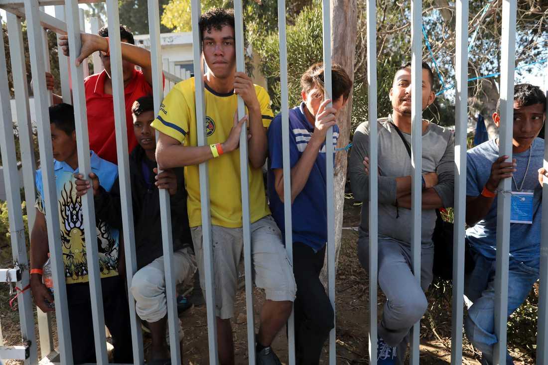 Centralamerikanska migranter bakom staketet till ett tillfälligt boende i Tijuana i Mexiko.