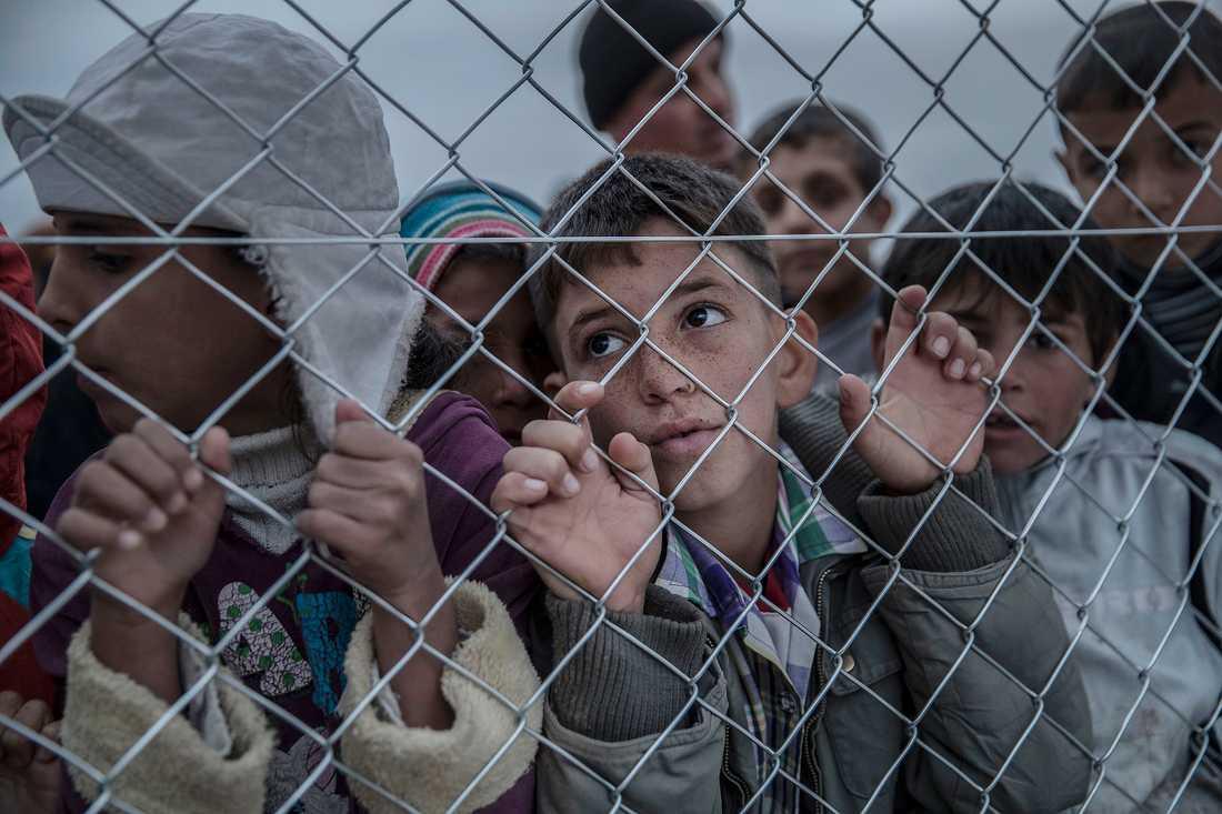 """Flyktingar i flyktinglägret """"Hassan Sham"""" en bit utanför Mosul i Irak."""