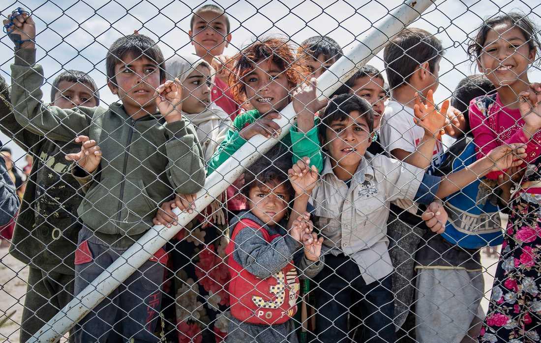 Barn hålls fångna i al-Hol-lägret i Syrien i väntan på beslut om vart de ska ta vägen.