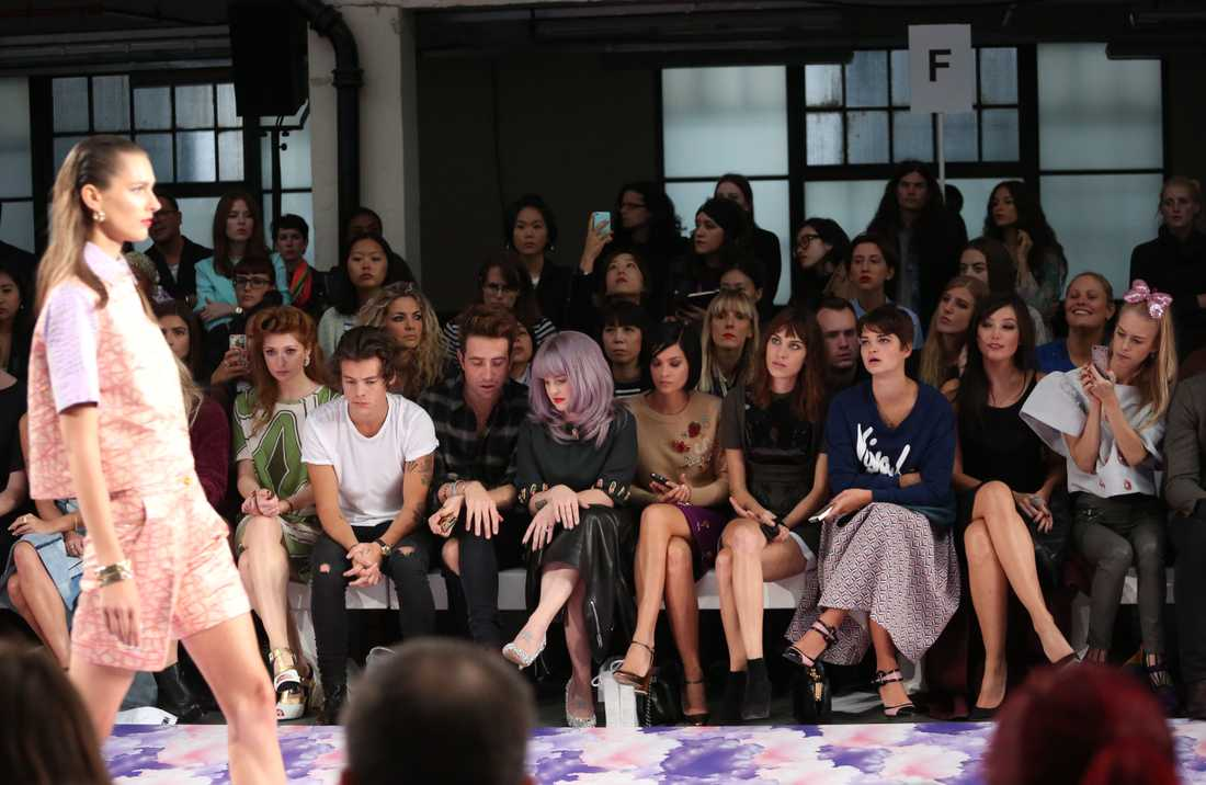 Fashionistan Harry Harry gillar både mode och de tjusiga damerna som visar kläderna