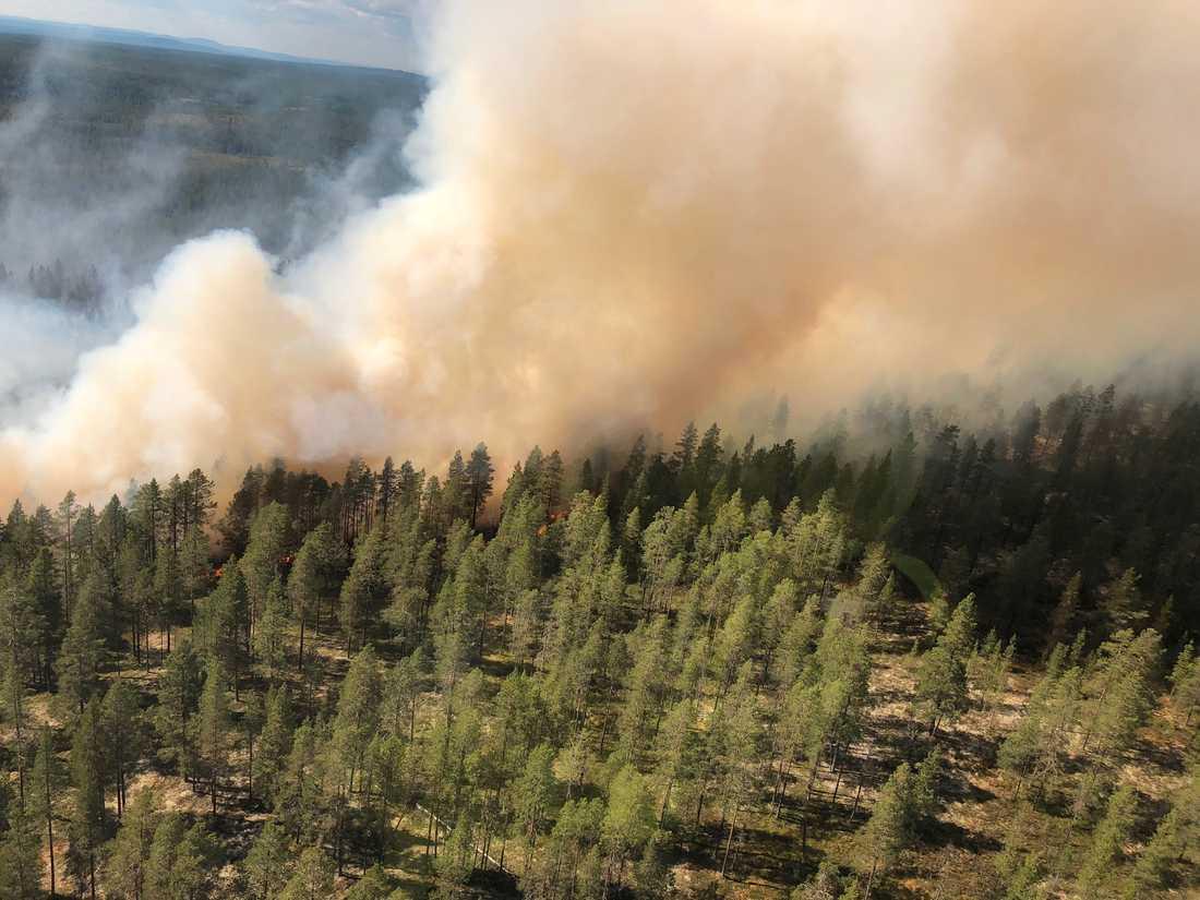 Arkivbild från brandfronten vid Älvdalens skjutfält.