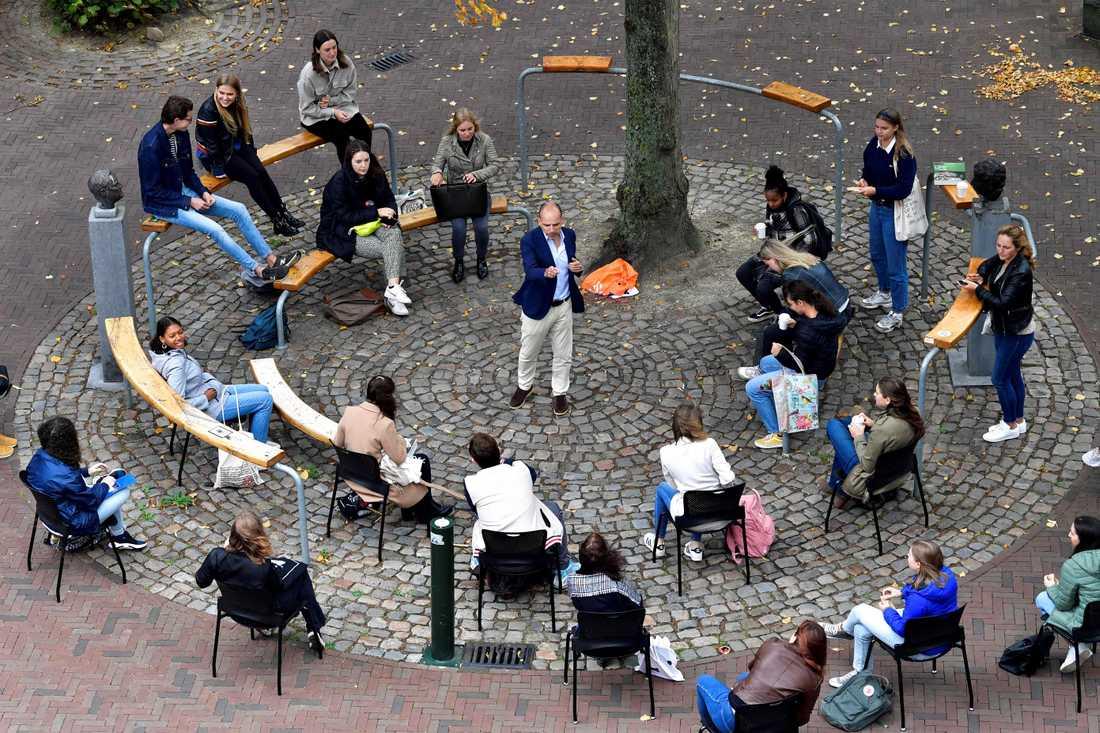 Professor Edward Nieuwenhuis undervisar sina 25 studenter utomhus.