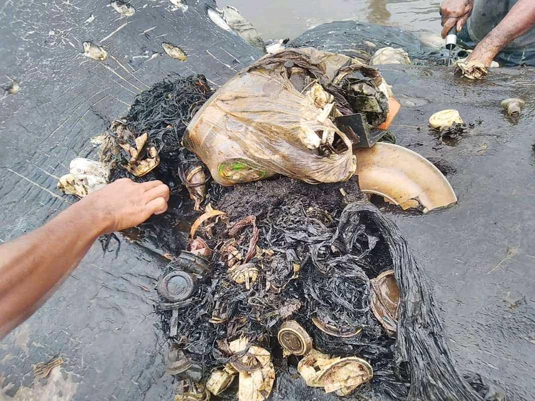 Klumpen utgjordes av nästan sex kilo plast.
