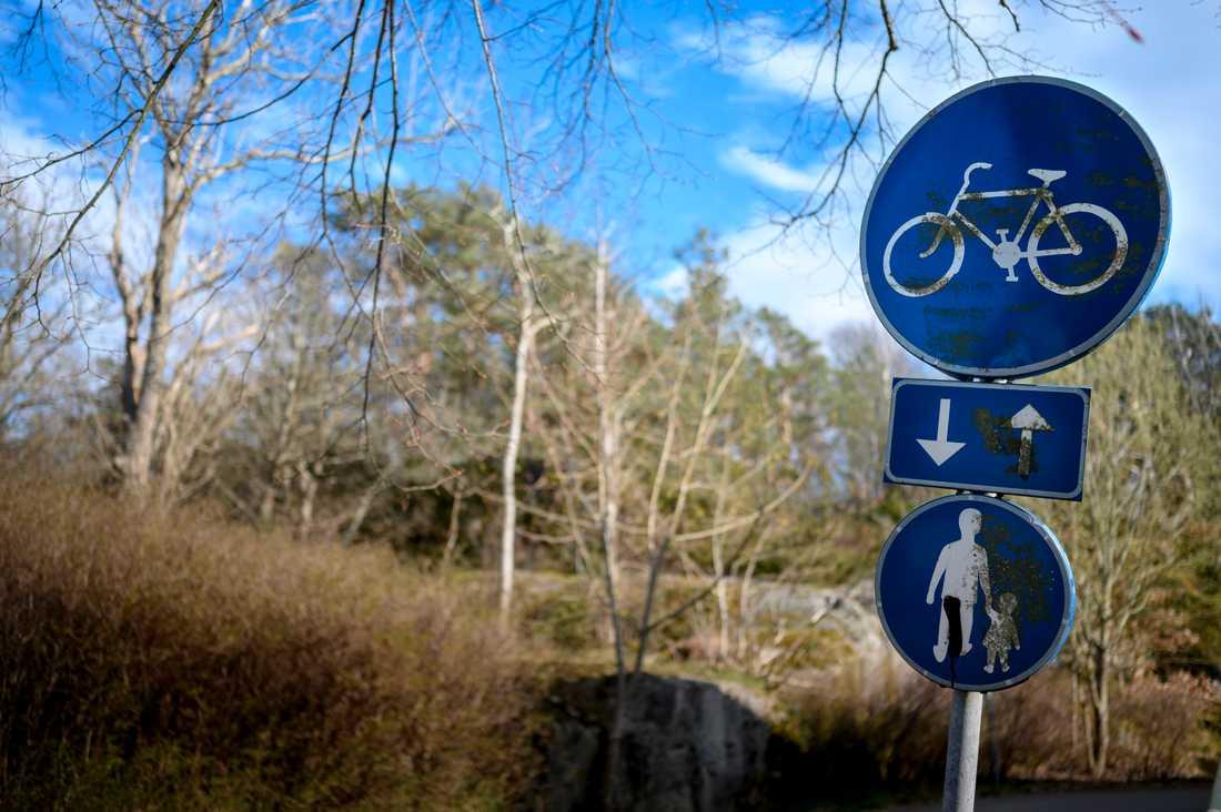 Cykelvägen där en åttaårig flicka blev misshandlad och våldtagen i södra Göteborg 1995. Bilden är tagen tidigare i år.
