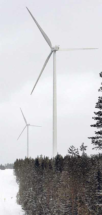 byggs ut Vindkraftparken i Markbygden i Piteå kommun blir enorm – om den blir av.
