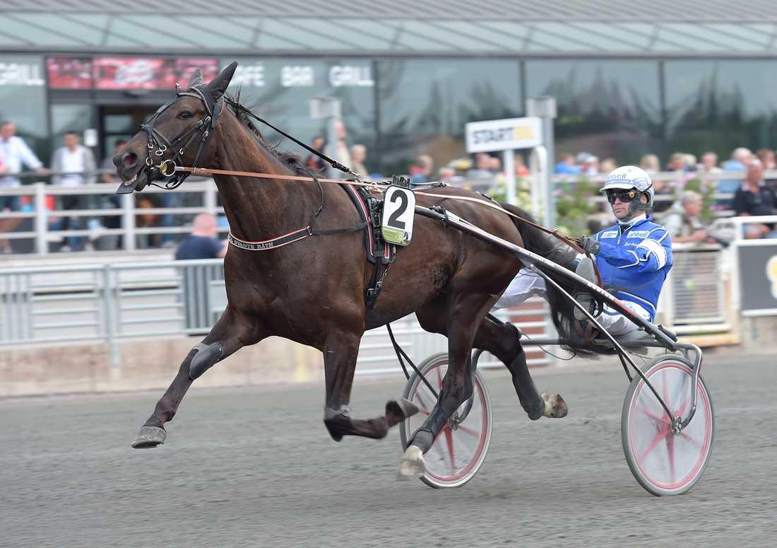 Zorro Kronos spikas på V86 av Sportbladets Per Nicklasson
