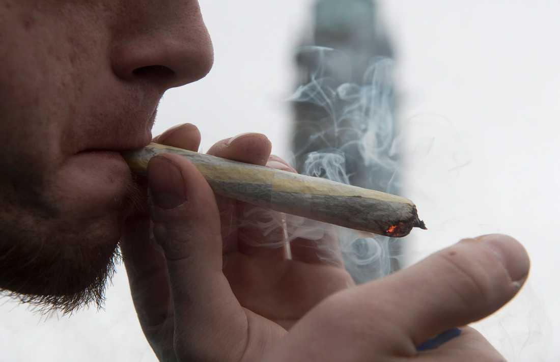 Kanda har röstat ja till att legalisera cannabis.