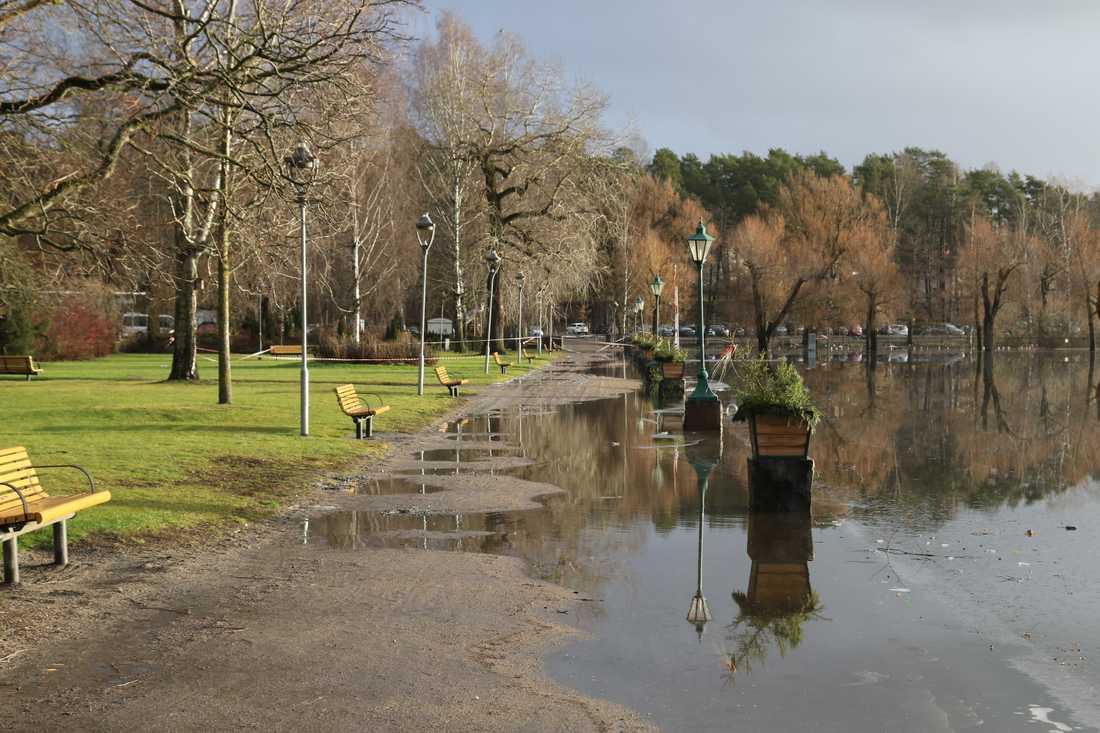 Stora regnmängder har fått vattnet att stiga över kajkanten i stadsparken i Arvika. Bild från i förra veckan.