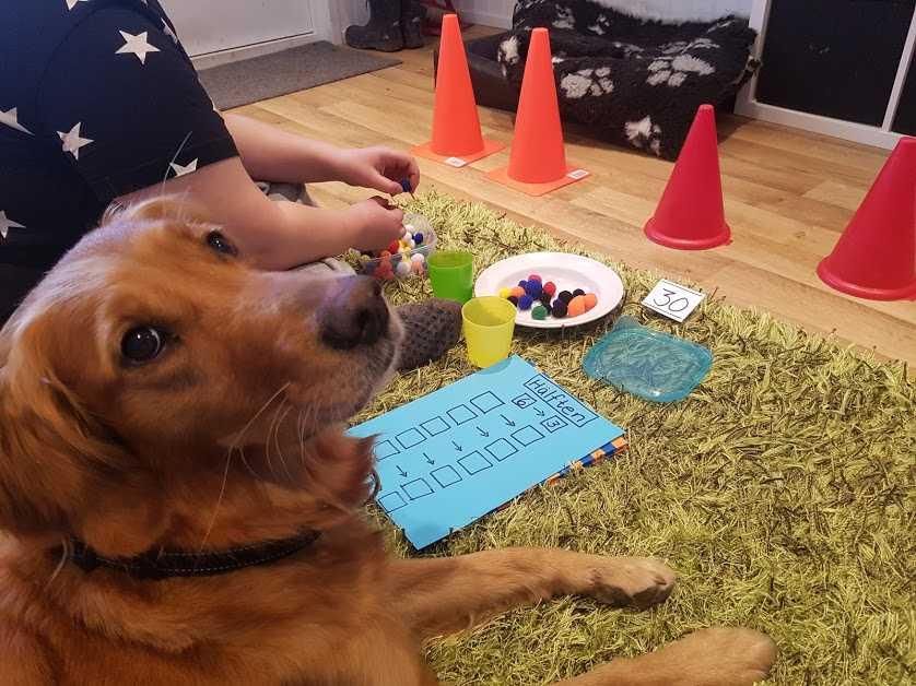 Freya hjälper barnen i skolan att räkna matte.