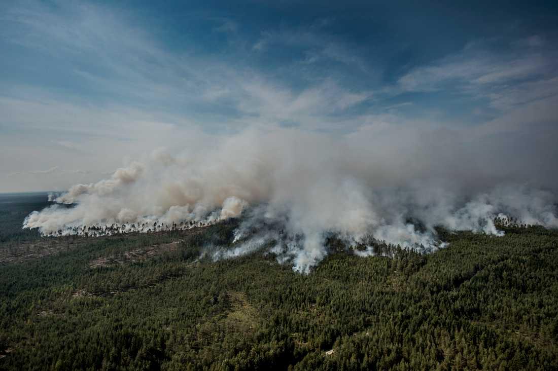 Den främre eldhärden sträcker sig i ett över 7 kilometer långt pärlband och totalt är det ett område på över 25 kvadratkilometer som brinner. Lågorna tar sig snabbare och snabbare söderut - mot en liten sjö som heter Rörbosjön.