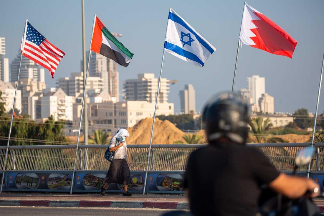 De amerikanska, emiratiska, israeliska och bahrainska flaggorna vajar i Israel inför den historiska fredsceremonin i Vita huset i USA.