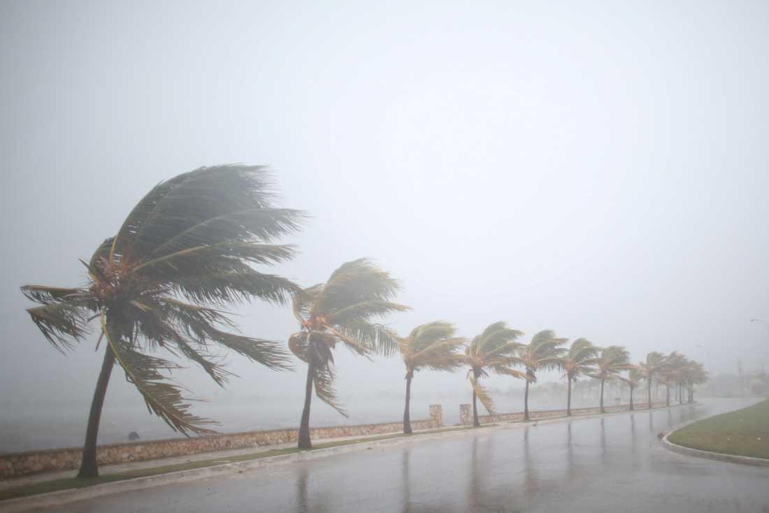 Irma drar fram över Kuba.