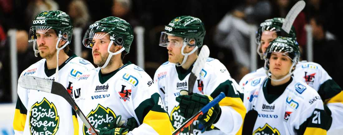 Björklöven kommer inte att acceptera Svenska Ishockeyförbundets beslut.
