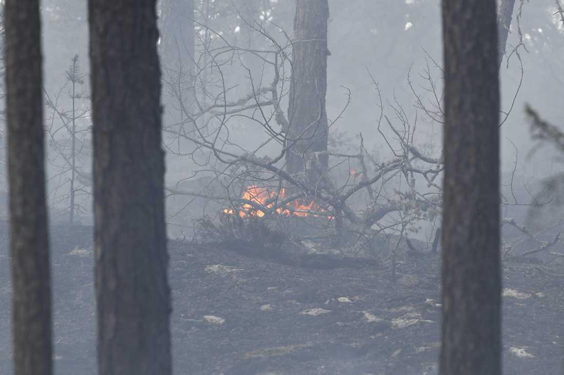 Vid 14-tiden fick räddningstjänsten larm om en ny brand vid Tjursjön i Haninge kommun.