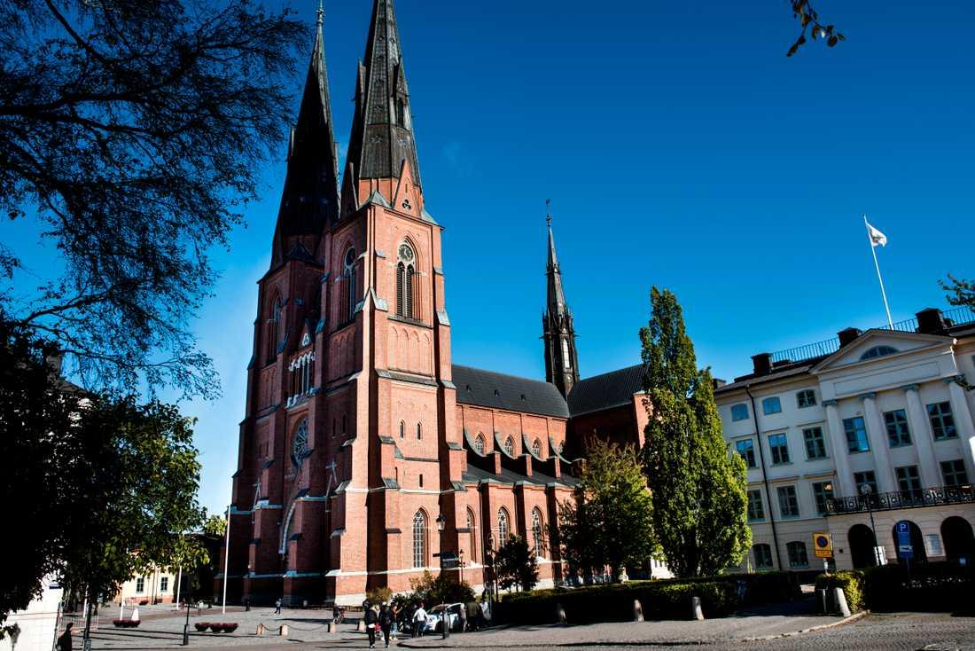En person har anmält Svenska kyrkan för hets mot folkgrupp på grund av en stenskulptur i Uppsala domkyrka.