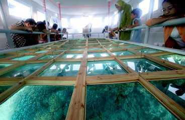 Från glasbottenbåten kan även den som inte gillar att dyka upptäcka Röda havets fina fiskar.