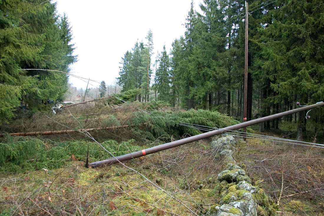 Tusentals abonnenter i södra Sverige saknade el efter stormen Gudrun år 2005. Arkivbild.