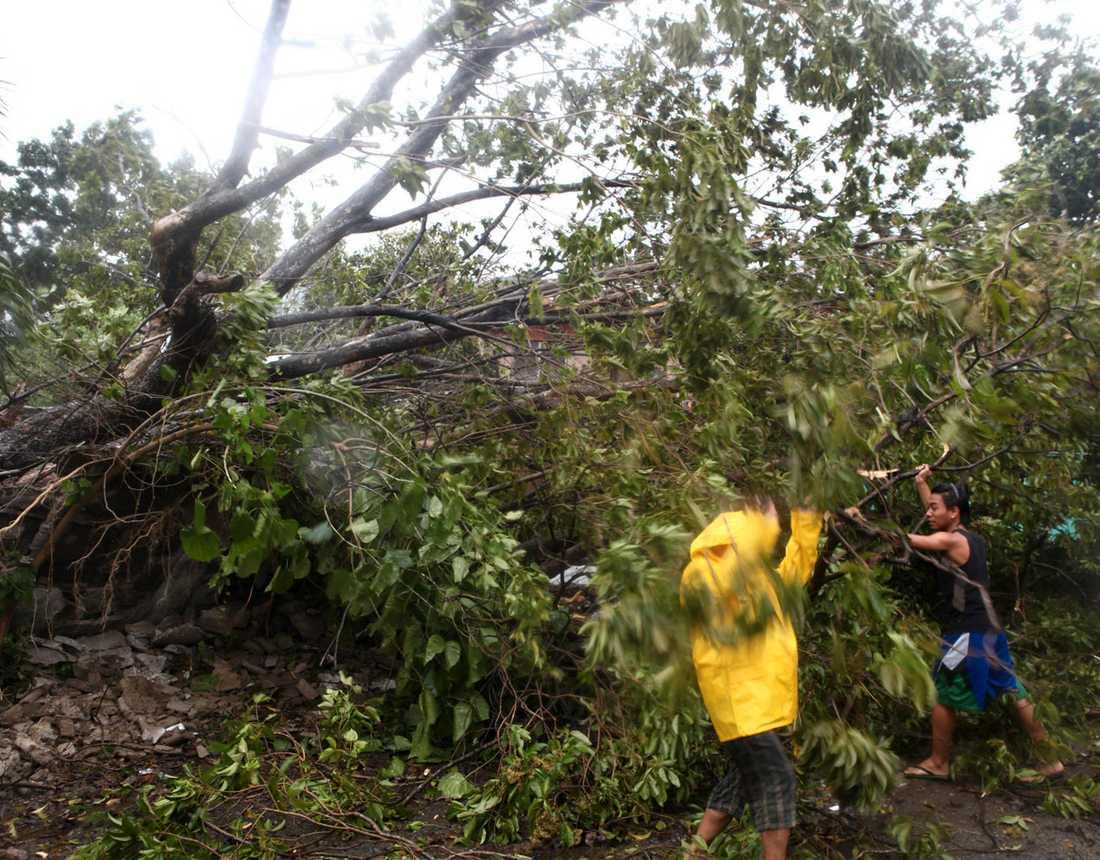 Boende röjer upp efter nedfallna träd i provinsen Cebu.