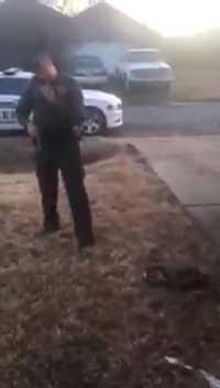 Den skadade hunden ligger på marken.