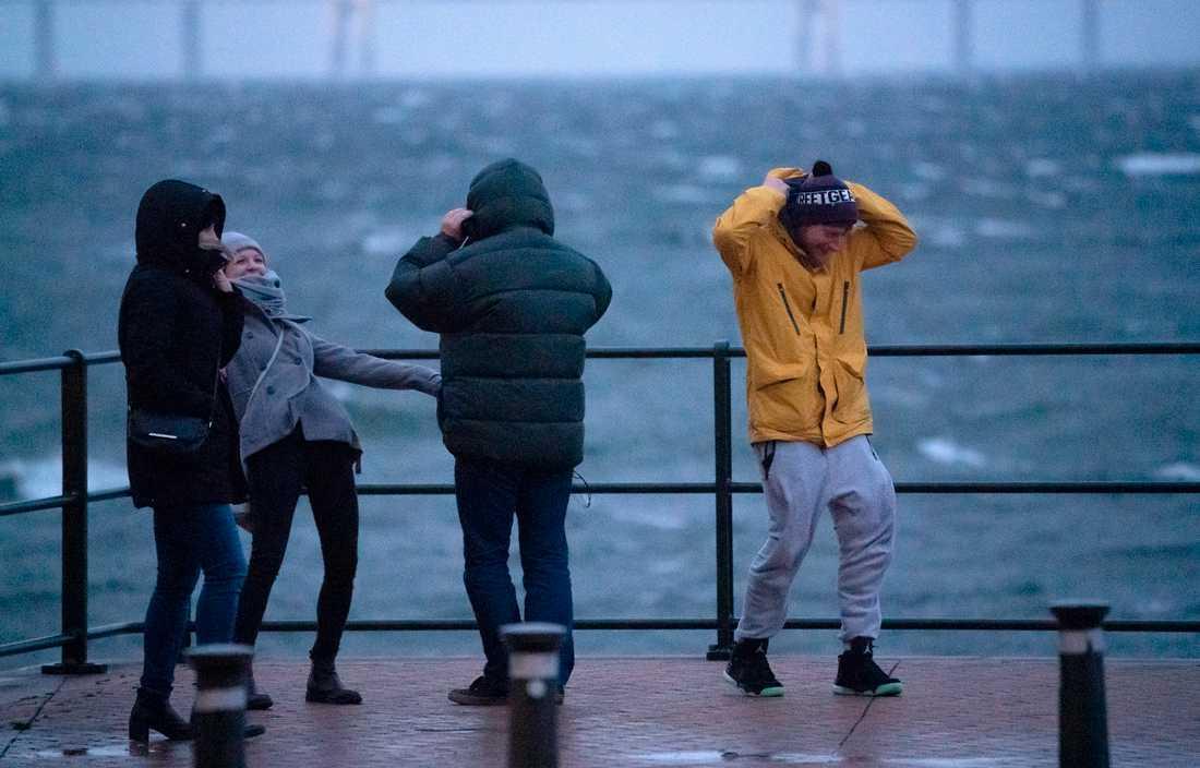 Stormspanare i den hårda vinden på Sundspromenaden i Malmö med Öresundsbron i bakgrunden.
