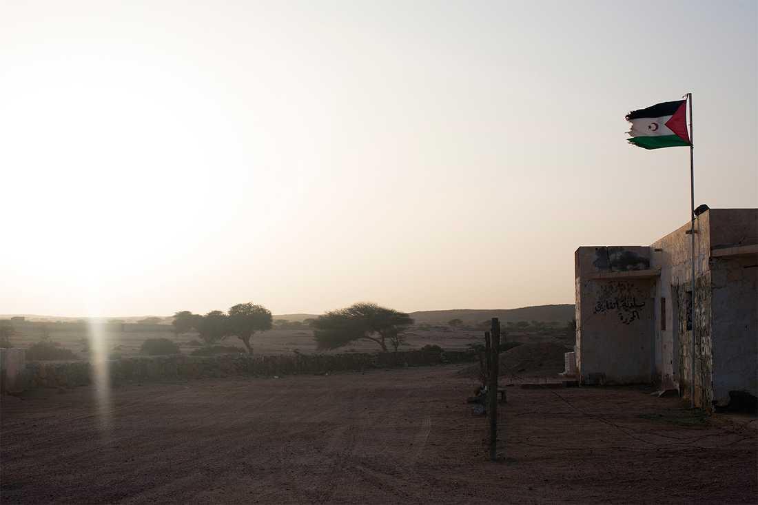 Staden Tifariti kontrolleras av befrielserörelsen Polisario och utgör någon form av huvudstad i de så kallade befriade områdena. Det är ett nomadsamhälle med ett tusental invånare, uppbyggt kring Polisarios armébaser, en skola, en FN-bas och ett sjukhus. Foto: Johan Persson