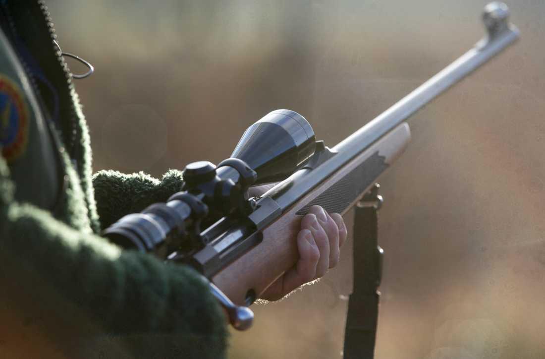 Domen riskerar splittring bland jägare och ortsbefolkning, enligt Svenska jägareförbundet. Arkivbild.