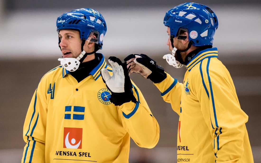Per Hellmyrs och Johan Löfstedt jagar revansch efter tredjeplatsen i VM förra året.