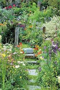 Lättskött En vildvuxen trädgård kräver också sitt men är naturligtvis mer lättskött än en stramt tuktad trädgård.