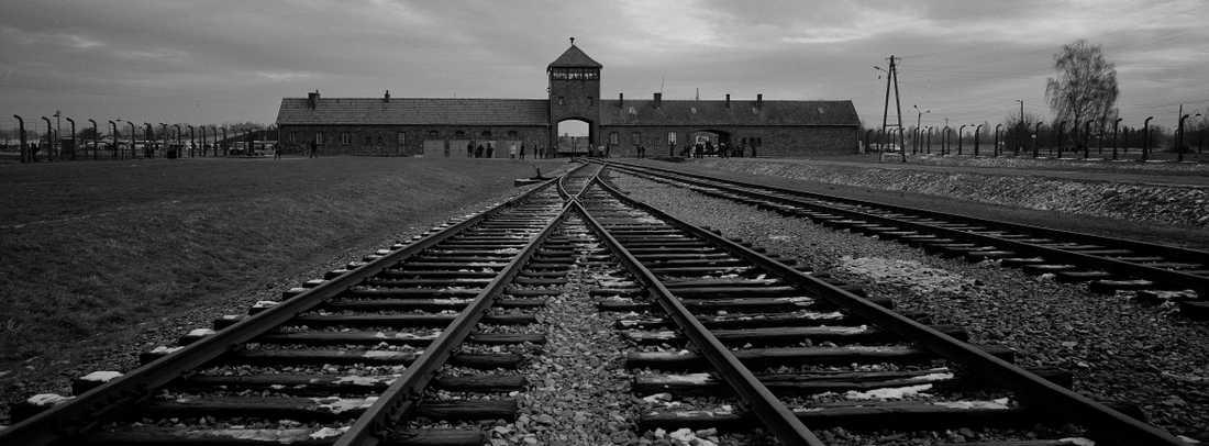 Auschwitz-Birkenau var ett kombinerat koncentrations- och förinteläger i Polen där nazisterna mördade cirka 1,3 människor, var av vilka 1,1 miljoner människor var judar.