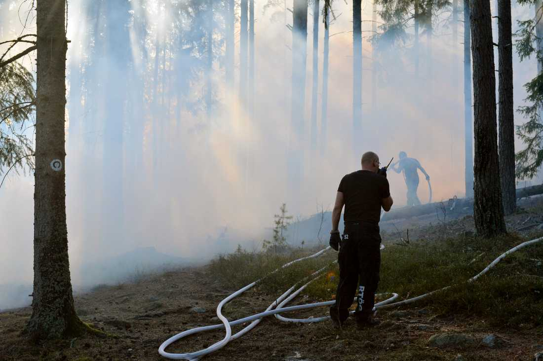 Skogsbranden i närheten av sjukhuset i Norrköping.