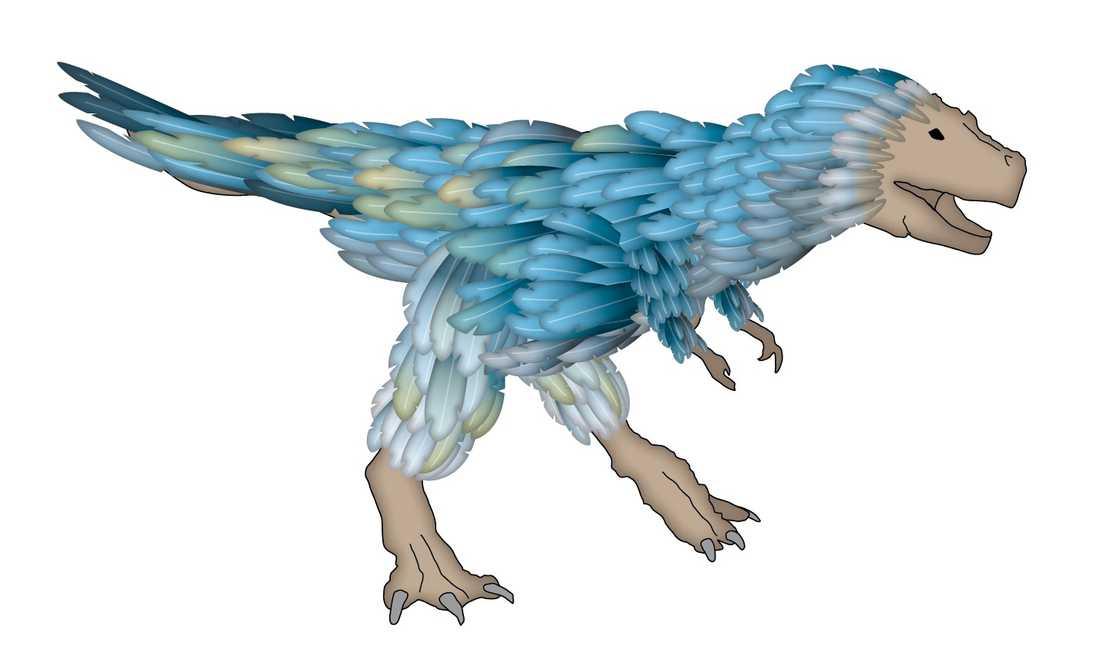 Enligt forskare ska alla dinosaurier ha haft fjädrar. Illustration: Fredrik Persson