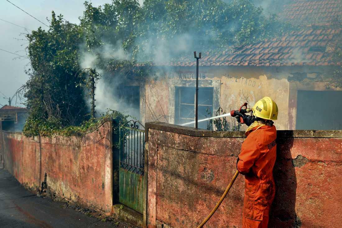Brand i Funchal på Madeira, Portugal