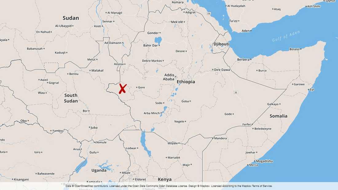 Två hjälparbetare har dödats i regionen Gambella i västra Etiopien.