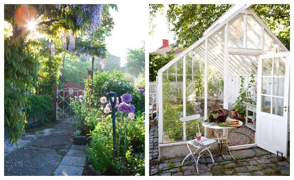 Tusen trädgårdar – nu får du titta in i mängder av privata trädgårdar.