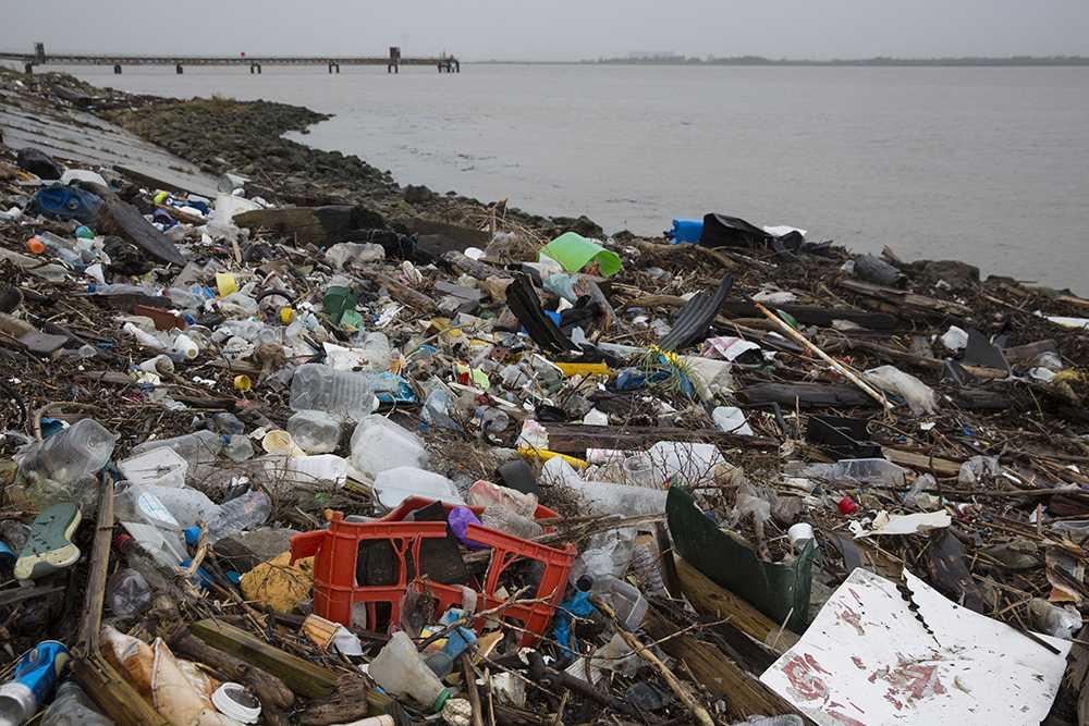 Föroreningar vid Themsens utmynning