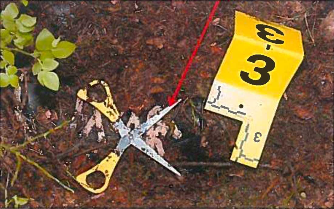 Saxen hittades i samband med att Marzieh Amiris kropp hittades i skogen.