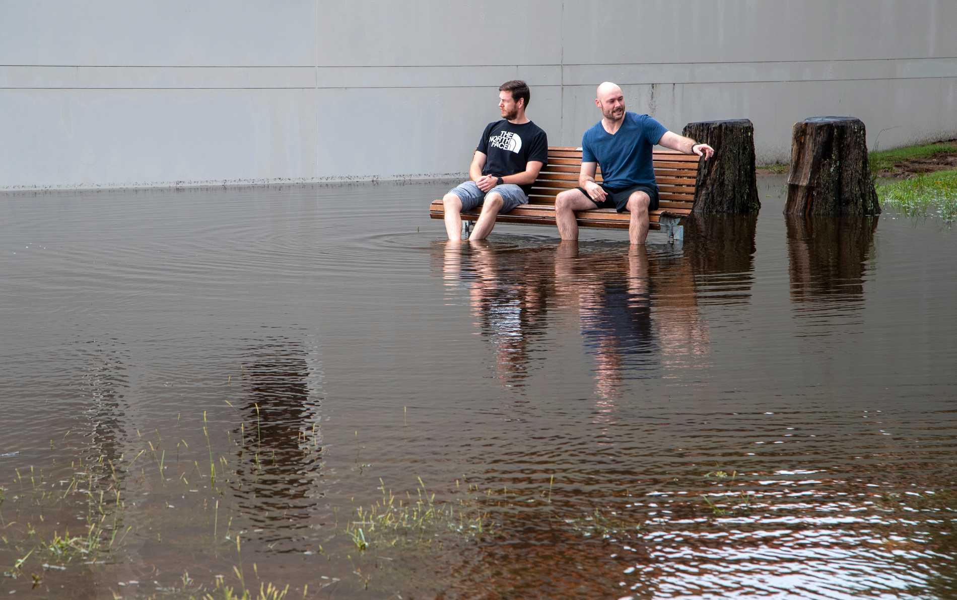 Översvämmad park i Port Stephens, norr om Sydney.